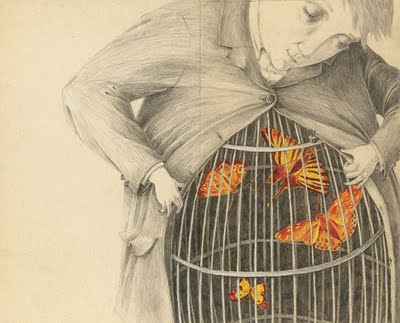 butterfly in cage
